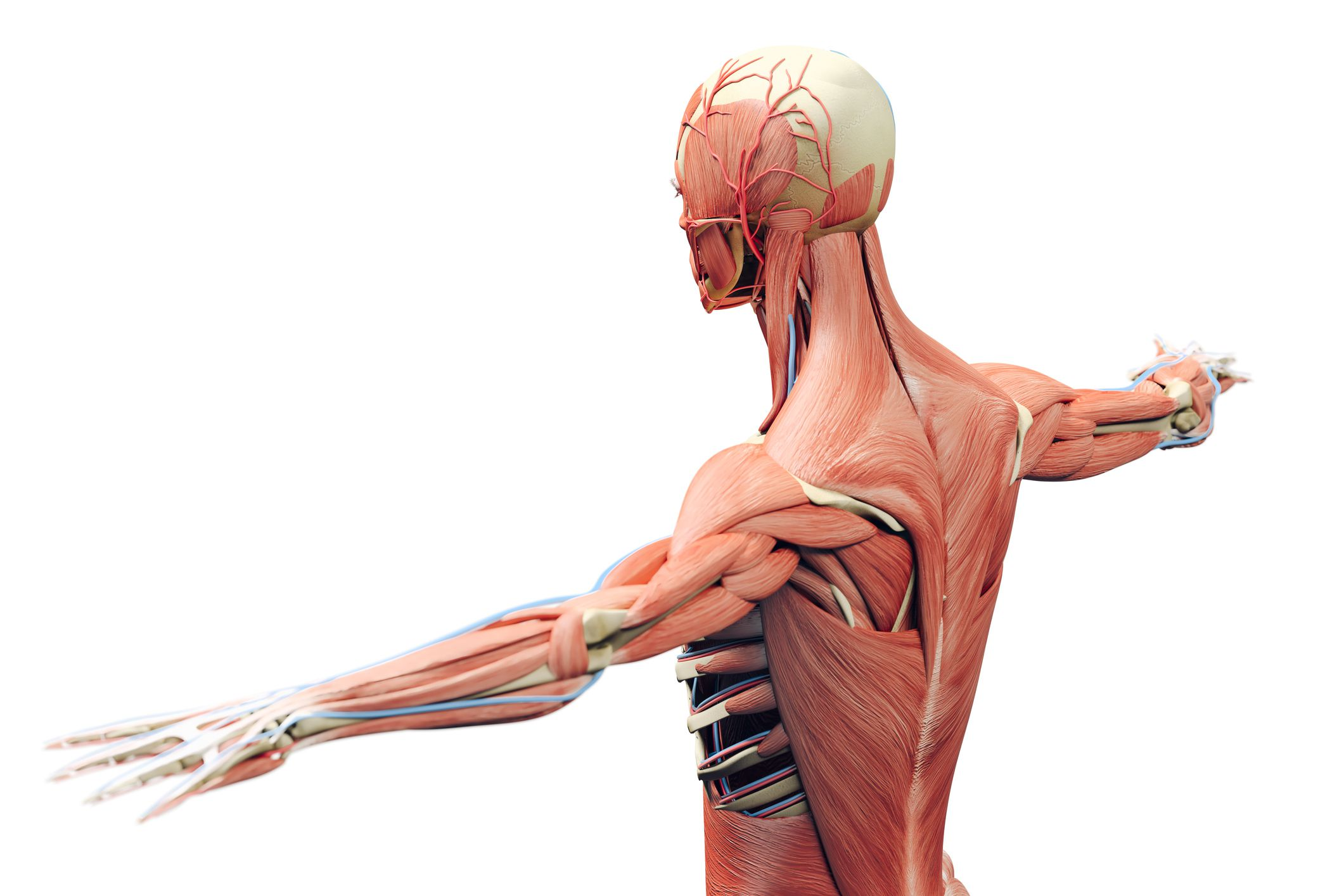 traitement de la douleur avec le laser EVRL